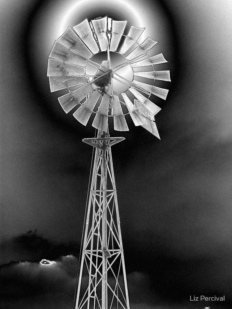 Metallic windmill by Liz Percival