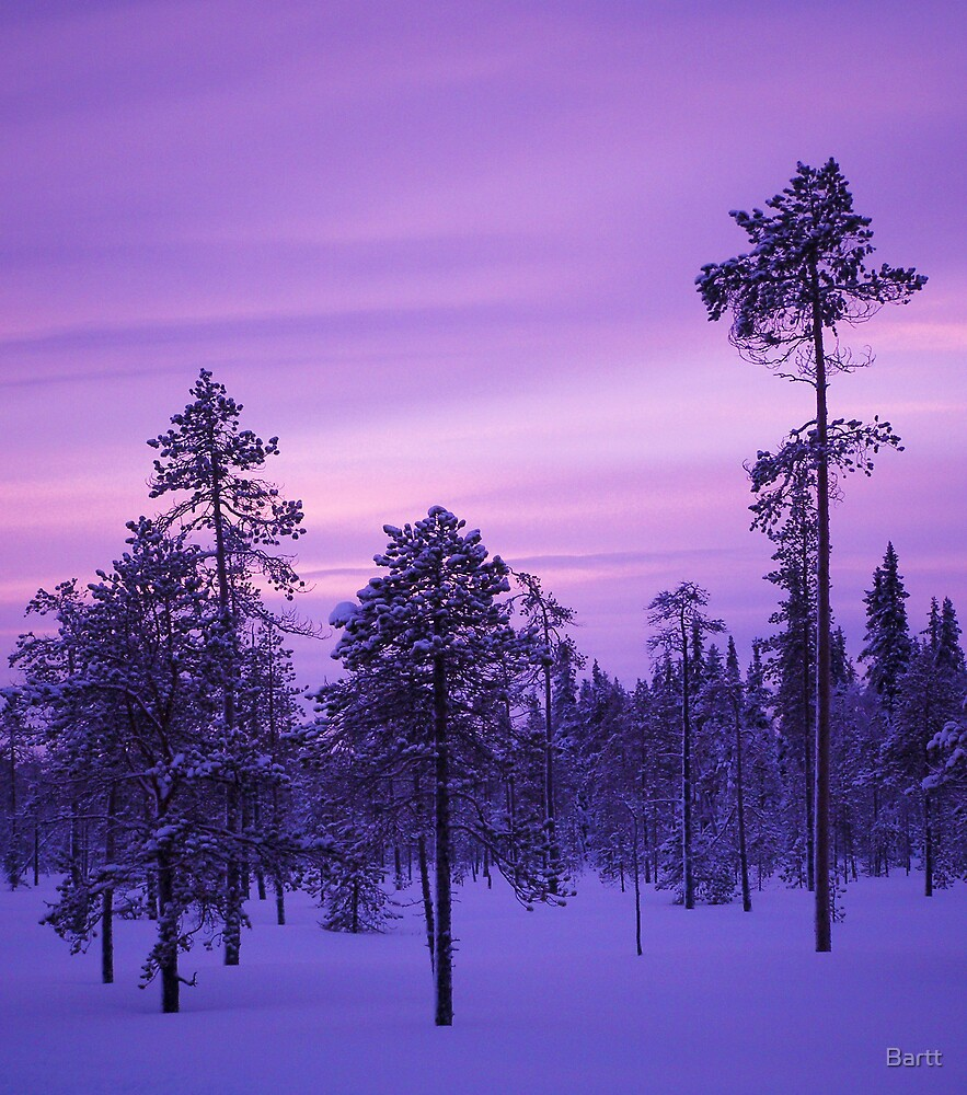 Lapland Evenings 2 by Bartt