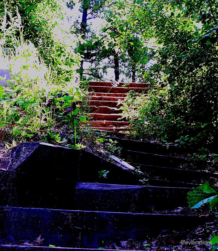STEPS by lifevibrations