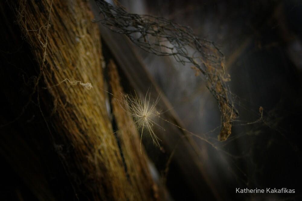 glow in the dark by Katherine Kakafikas