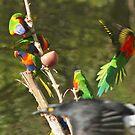 Photobombing Birdie by myraj