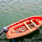 Small Red Boat by Shulie1