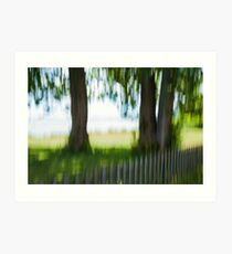 Summer Trees by Fence Art Print