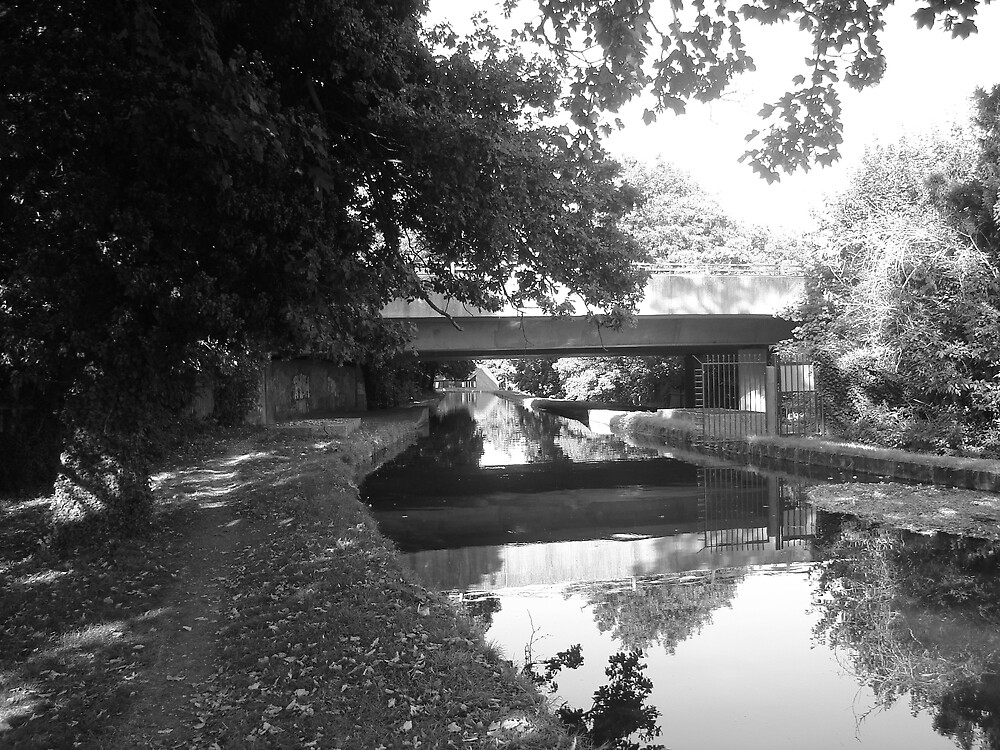 Under The Black And White Bridge by DJMarchese
