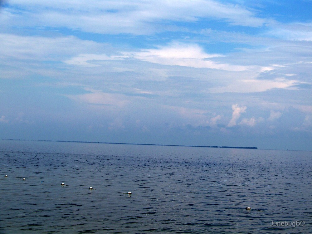 Storm Clouds Gathering on Tampa Bay  2 by Junebug60