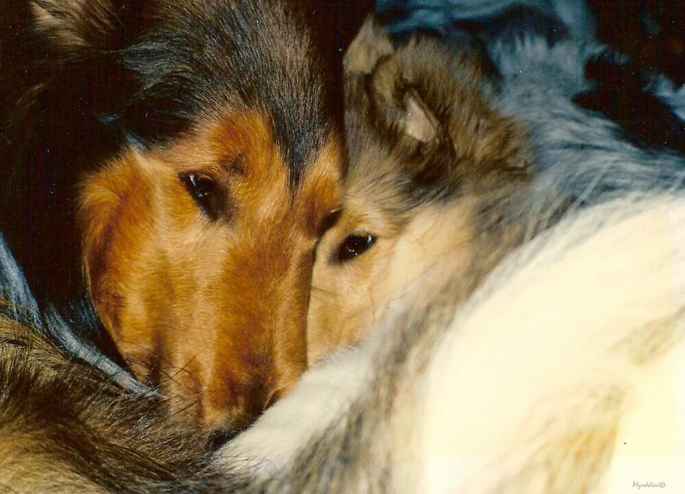 Kissing Cousins by Myrddin