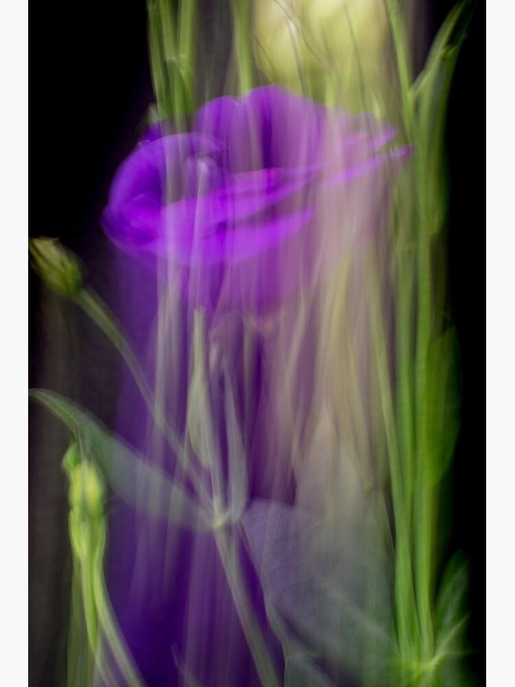 Fleur Blur-Abstract Purple Flower Photo by AhUmDesign