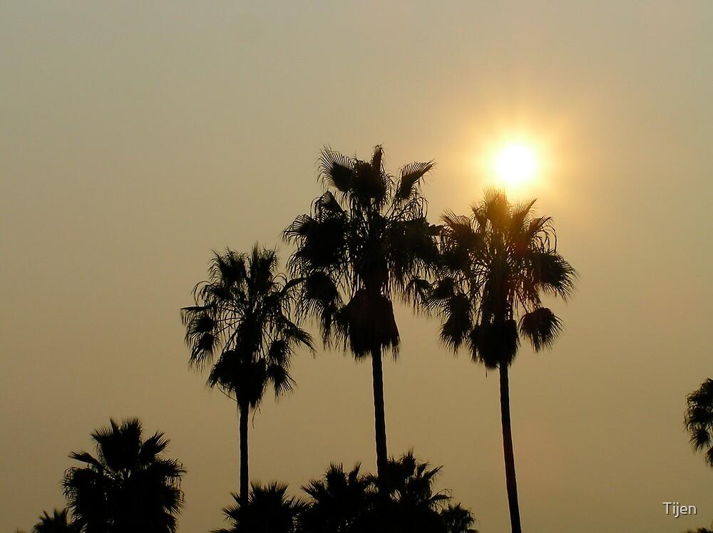 santa monica fire sunset by Tijen