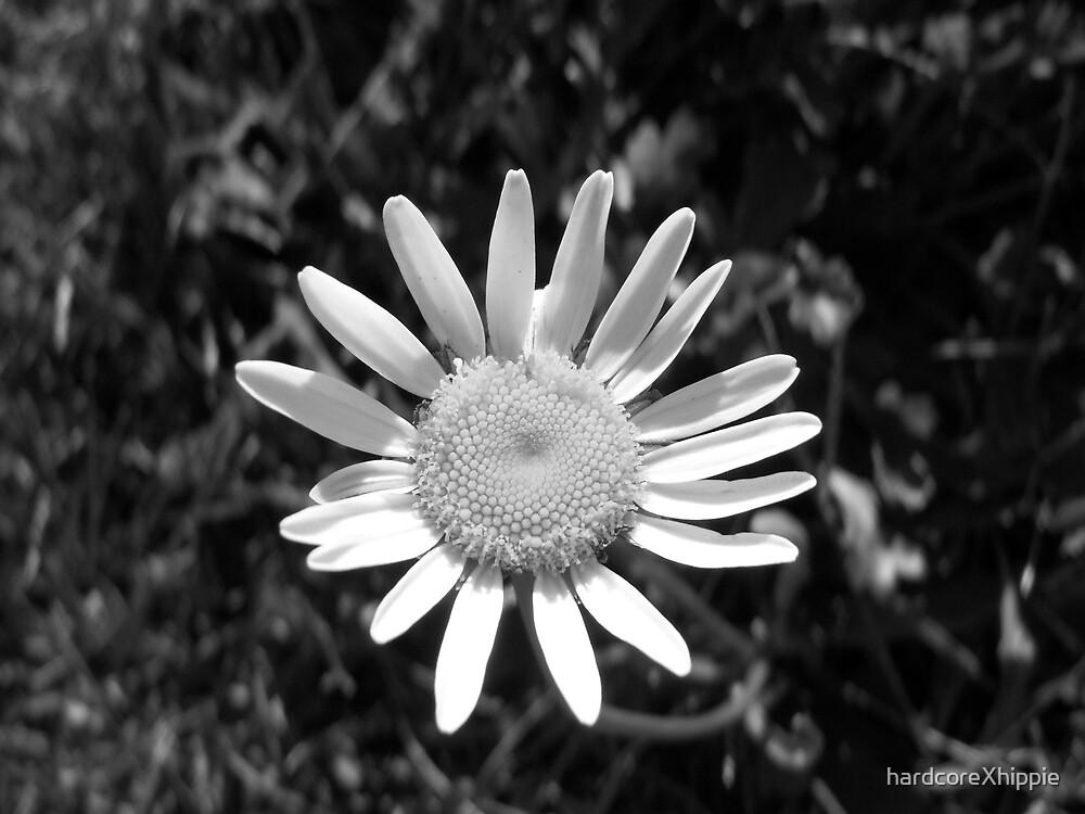 daisy by hardcoreXhippie