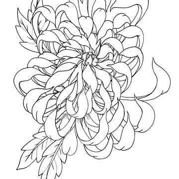 chrysanthemum by SinAddict