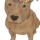 pitbull with flower crown by andilynnf