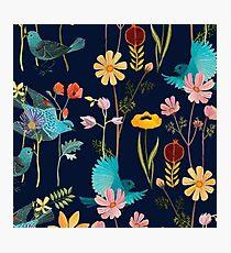 flores y pajaros  Photographic Print