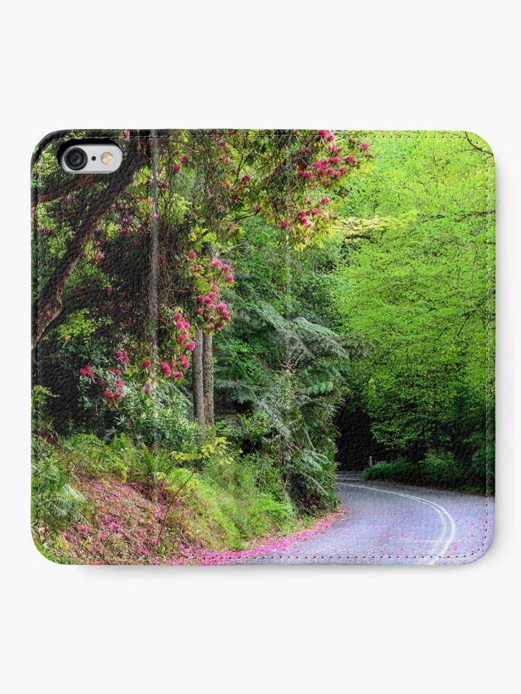 Alternate view of Spring on The Avenue - Mt Wilson NSW iPhone Wallet