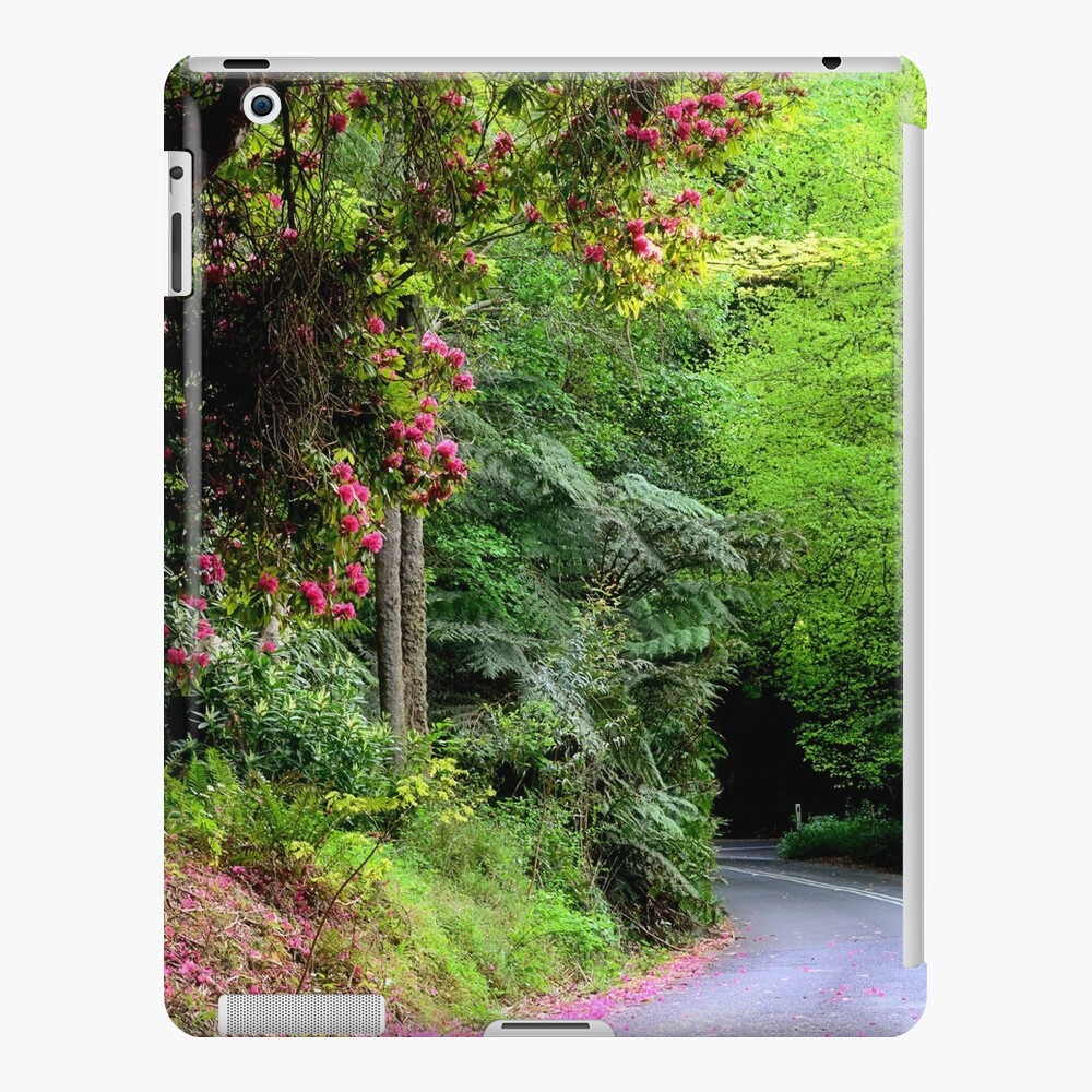 Spring on The Avenue - Mt Wilson NSW iPad Case & Skin