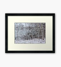 Winter's Spell IV Framed Print