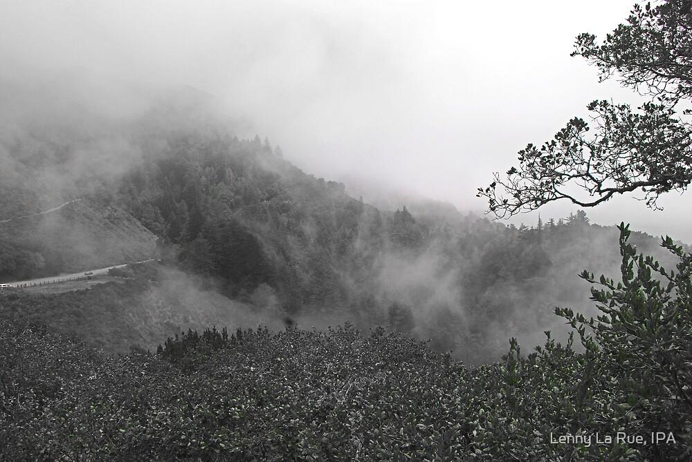 fog crashing into the Big Sur hills by Lenny La Rue, IPA