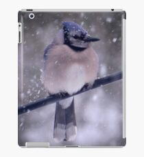 Bluejay In A Snowstorm iPad Case/Skin