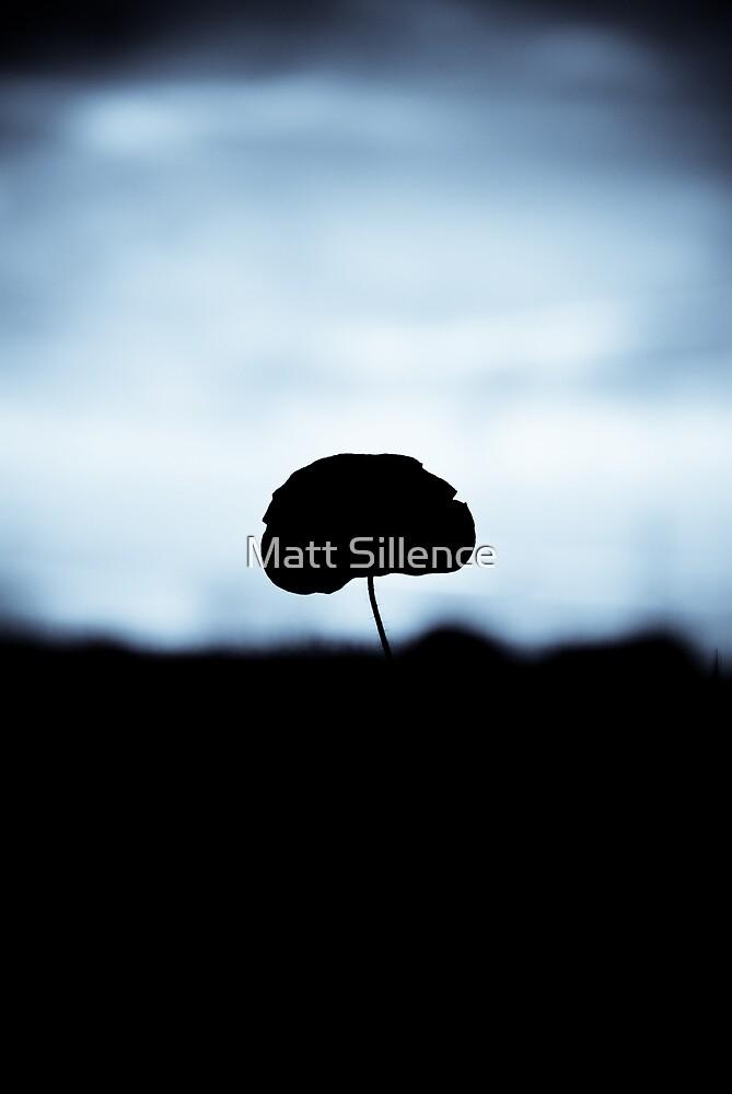 Lonely Flower by Matt Sillence