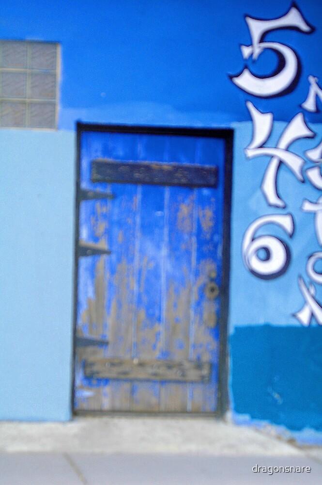 Blue Door by dragonsnare