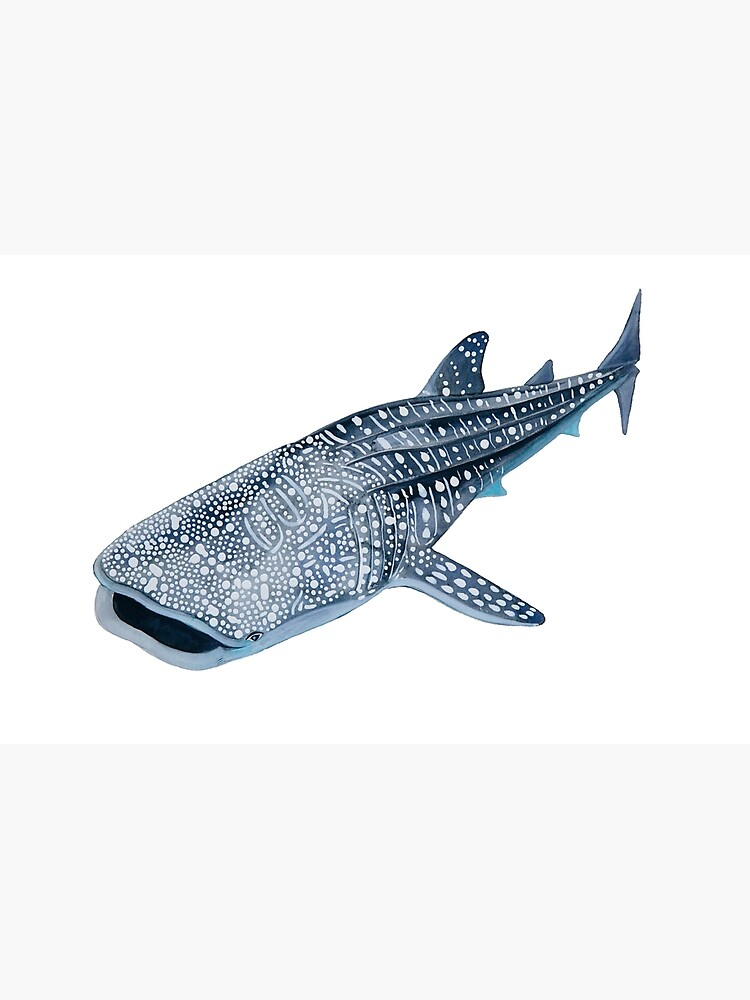 Tiburón ballena de michellefleurk
