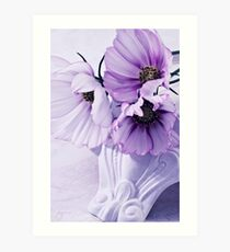 Three Lavender Cosmos Art Print