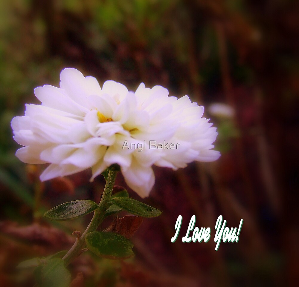 I Love You by Angi Baker
