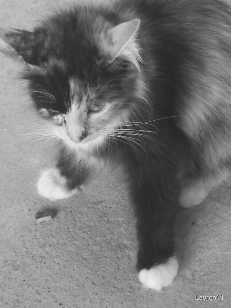 Cool Cat by Lauren01