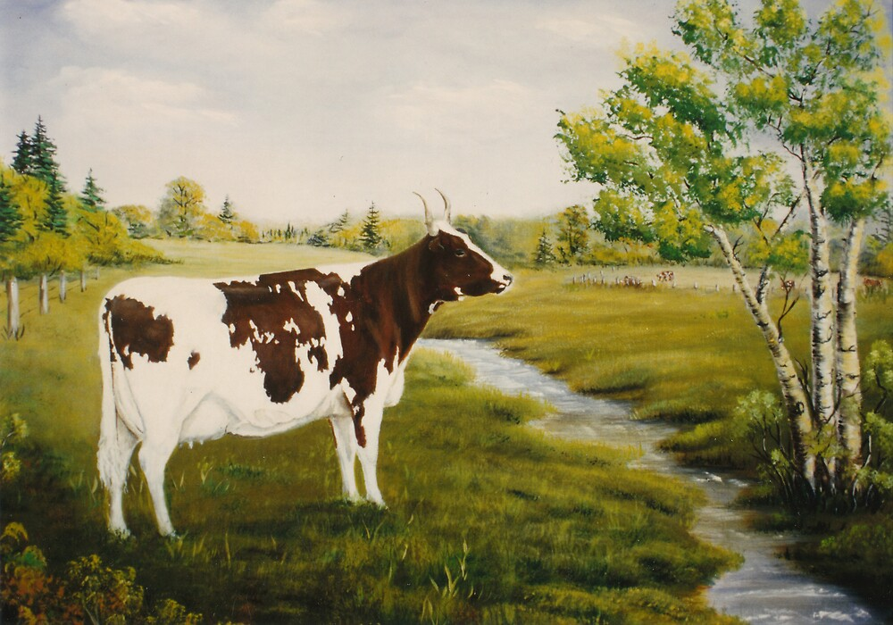 Ayrshire cow by Irene Clarke