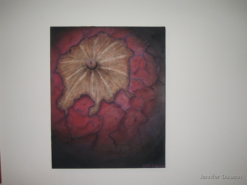 Red Nut by Jennifer  Dawson
