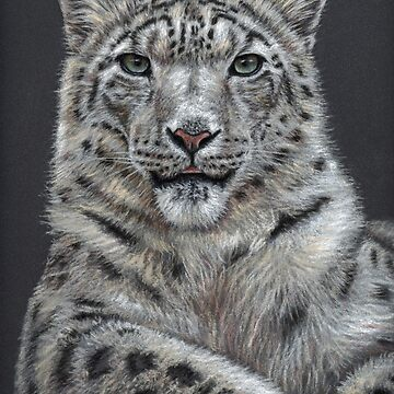 The Snow Leopard - Der Schneeleopard by ArtsandDogs