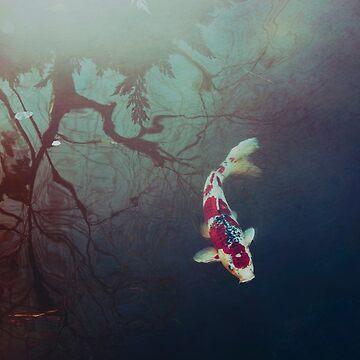 Pond of Reflection by EmiBlackBox