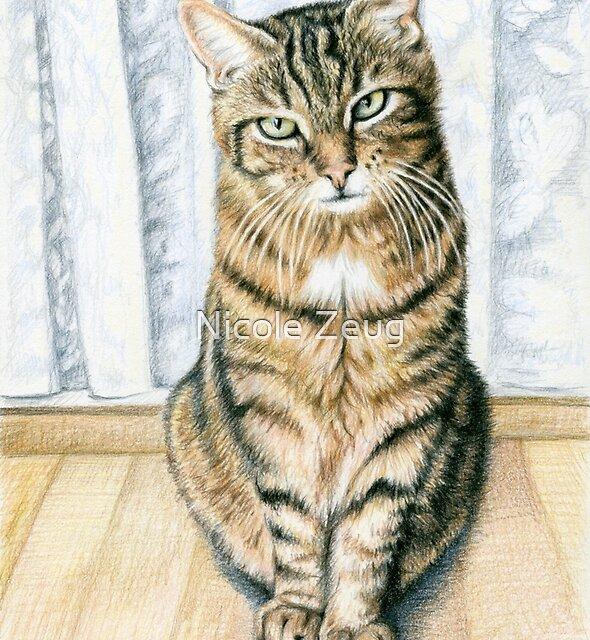 Room Tiger (Tomcat) by Nicole Zeug