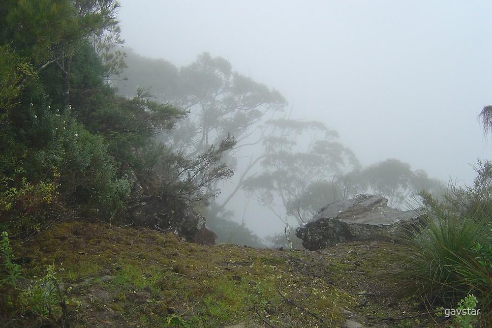 Misty Mountain by gavstar