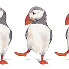3 Dancing puffins watercolor illustration by Kitty van den Heuvel