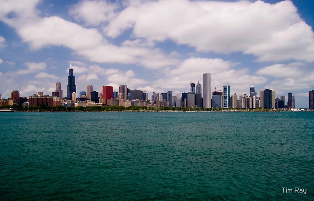 Chicago Skyline by Tim Ray