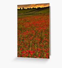 RED DUSK Greeting Card