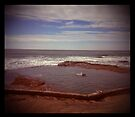 Holga madness.....these three swimmers by Juilee  Pryor