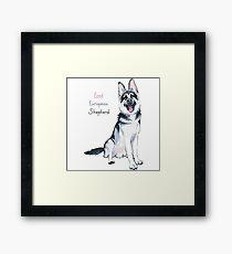 East European Shepherd dog Framed Print