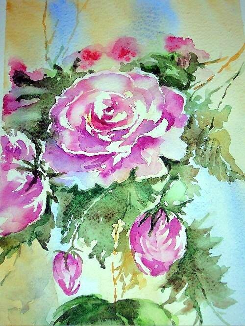 Rosa rosae rosae... by miriam17