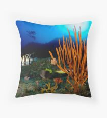 30 meters Throw Pillow
