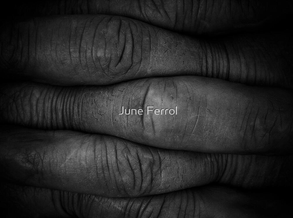 EXTREME by June Ferrol