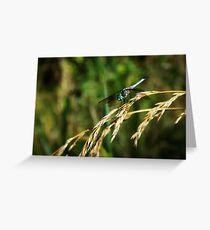 Dragon On Whole Wheat Greeting Card