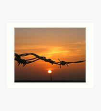 Sun through the wire Art Print