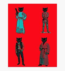 cat solo and gang Photographic Print