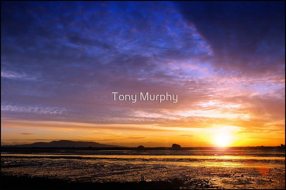Sunrise Clontarf Dublin by Tony Murphy