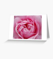 Pink Delight...... Greeting Card
