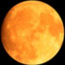 Full Moon by Daniel Knights