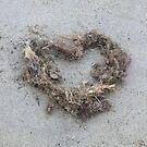 heart of seaweed by Wrigglefish