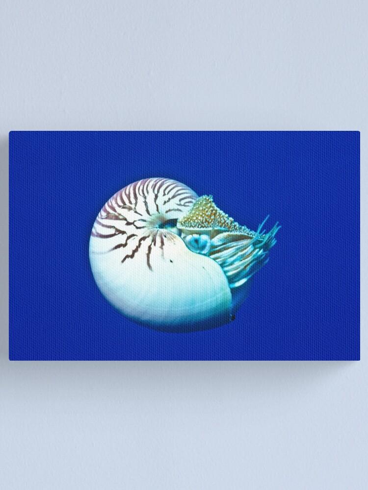 Alternate view of Nautilus Canvas Print