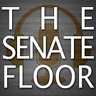 The Senate Floor by TheNerdParty